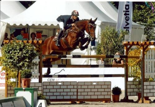 Compétition Haras du Verron