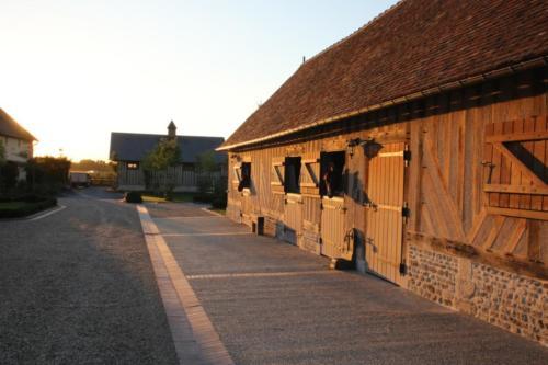 Haras de chevaux Victot Pontfol